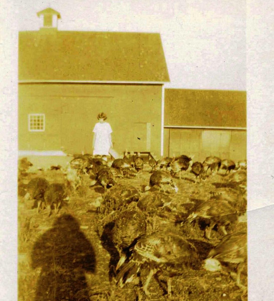 Courtesy of Noah Webster House West Hartford Historical Society