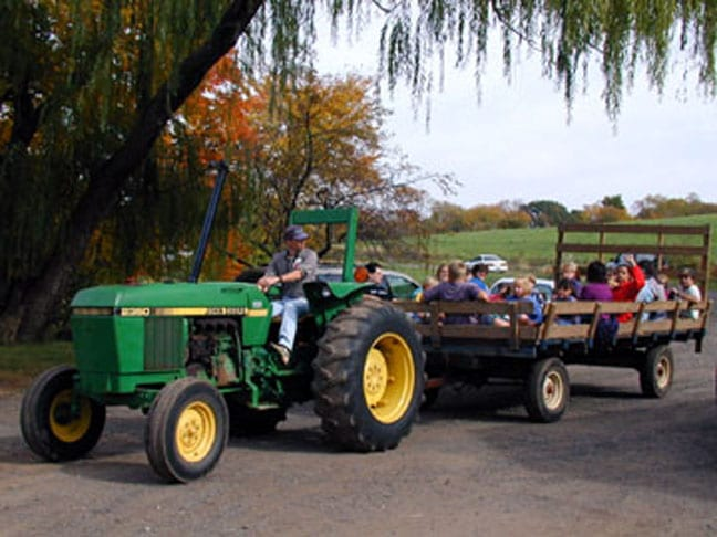 A variety of fall festival events will be held at Auerfarm. Submitted photo