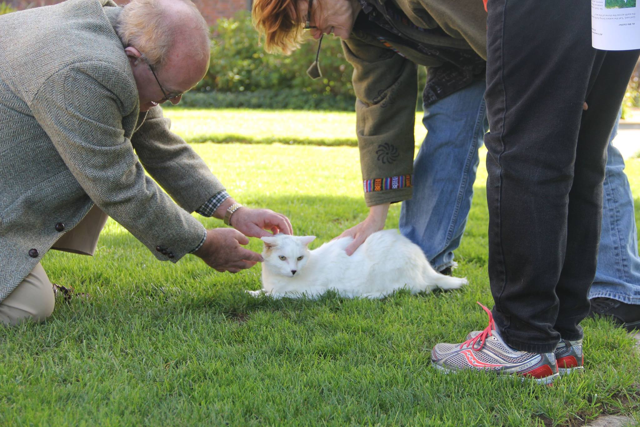 Rev. Geordie Campbell blesses a pet kitty during the 2015 Blessing of the Animals at First Church, West Hartford. Photo credit: Amy Melvin
