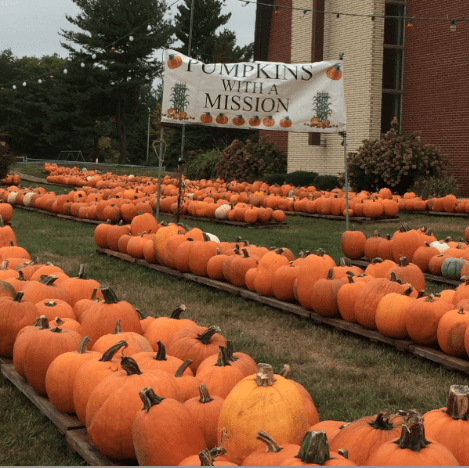 Pumpkins sold at the West Hartford United Methodist Church at the intersection of New Britain Avenue and Berkshire Road support the church's missions in the community. Courtesy photo