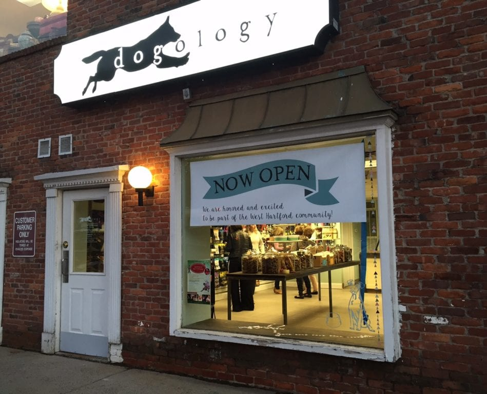 Dogology is located at 5 Sedgwick Rd., West Hartford, CT. Photo credit: Ronni Newton