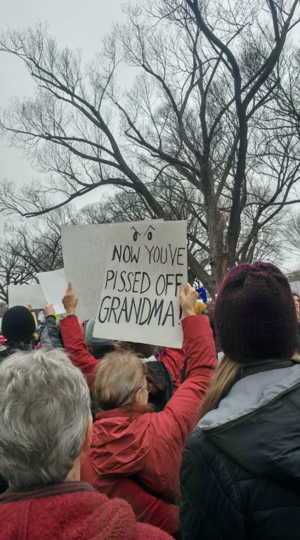Women's March on Washington. Photo courtesy of Essie Labrot