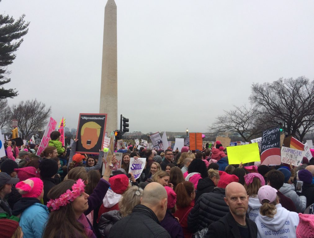 Women's March on Washington. Photo courtesy of Bob and Petra Carr