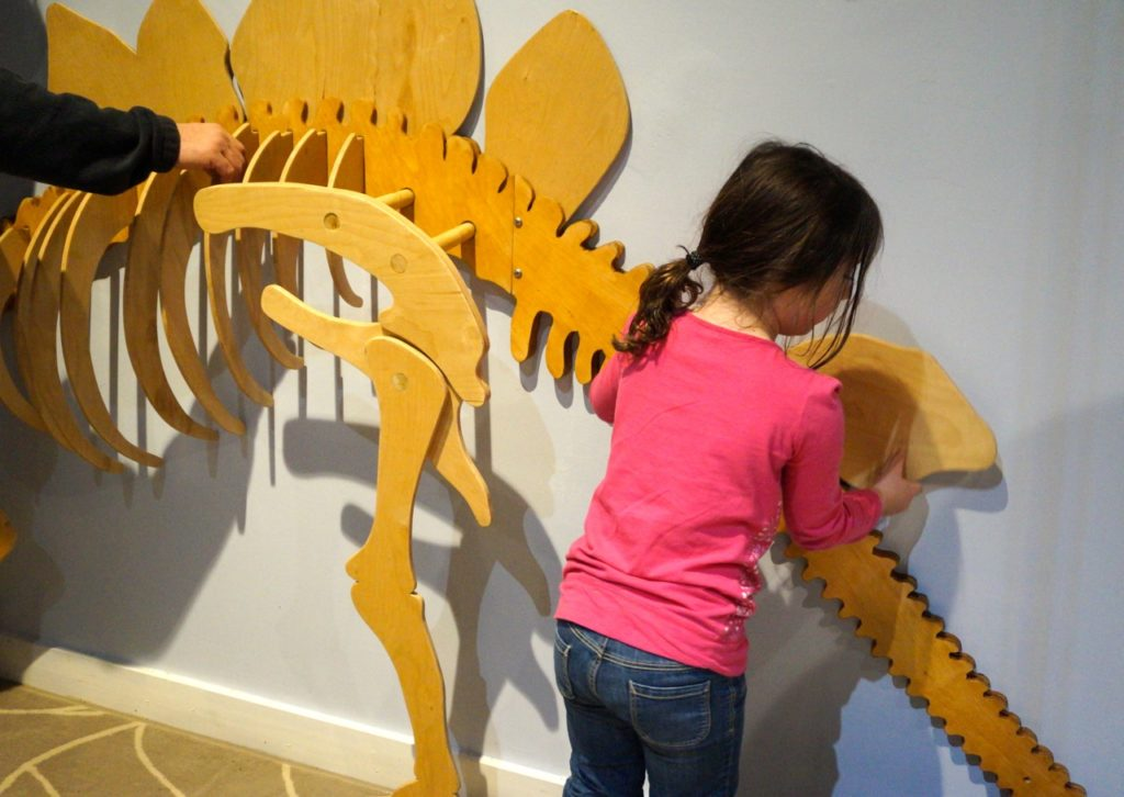 One of the interactive parts of Dinosaurs in Your Backyard: A Portal to Past Worlds exhibit. The Children's Museum, West Hartford. Photo credit: Ronni Newton