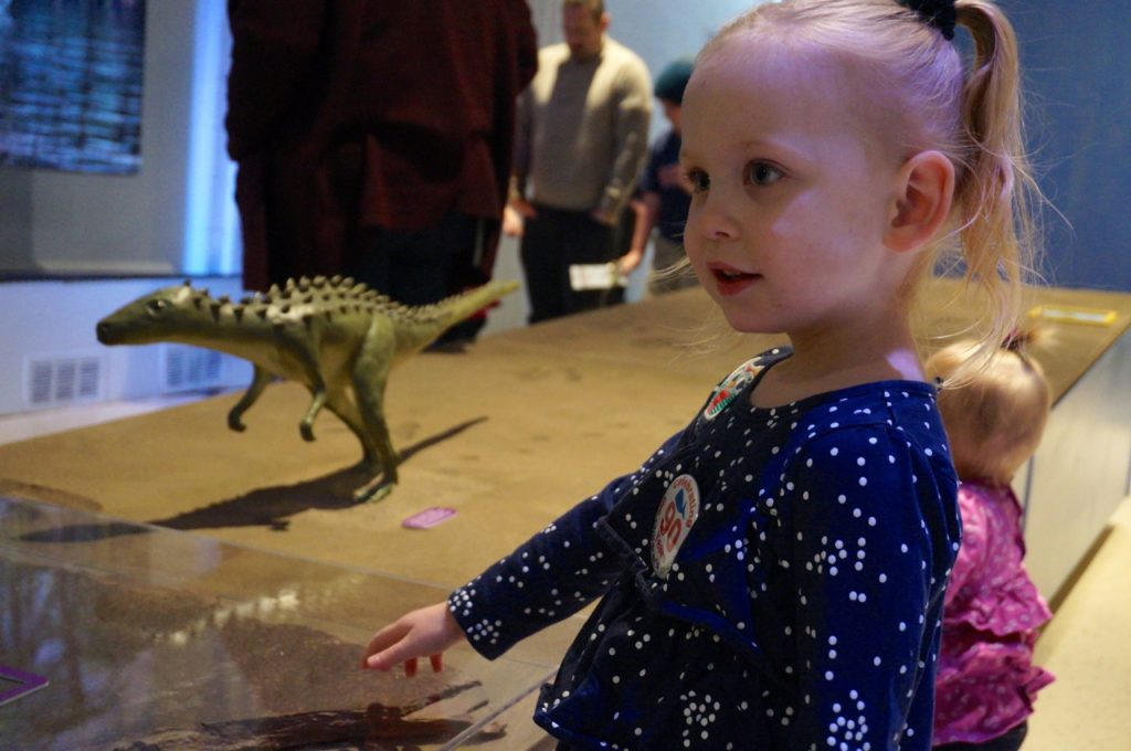Talia Dornbus, 3, of West Hartford checks out the Dinosaurs in Your Backyard: A Portal to Past Worlds exhibit. The Children's Museum, West Hartford. Photo credit: Ronni Newton